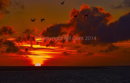 The sun set over Bleaker Island, Falkland Islands